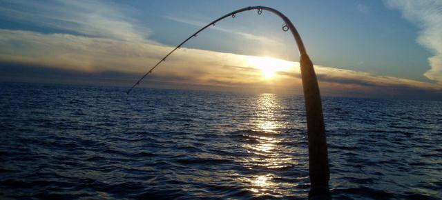 Sport fishing fishing trips boat charters long for Ct fishing season